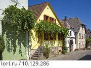 Купить «europe historical germany german tendrils», фото № 10129286, снято 16 октября 2018 г. (c) PantherMedia / Фотобанк Лори