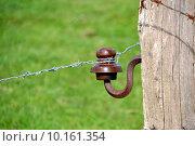 Купить «fence fencing insulator barbed wire», фото № 10161354, снято 23 марта 2019 г. (c) PantherMedia / Фотобанк Лори