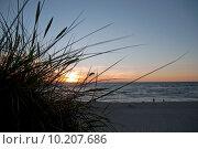Закат в дюнах. Стоковое фото, фотограф Svet / Фотобанк Лори