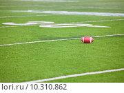 Купить «Football on Stadium Field», фото № 10310862, снято 16 сентября 2019 г. (c) PantherMedia / Фотобанк Лори