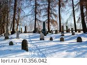 Купить «forgotten and unkempt Jewish cemetery with the strangers», фото № 10356042, снято 23 июля 2019 г. (c) PantherMedia / Фотобанк Лори