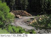 Купить «lasting sawmill black forest holzindustrie», фото № 10396278, снято 22 мая 2019 г. (c) PantherMedia / Фотобанк Лори