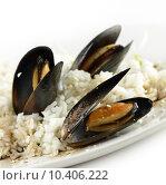Купить «Cooked Mussels With  Sauce And Rice», фото № 10406222, снято 22 июля 2019 г. (c) PantherMedia / Фотобанк Лори