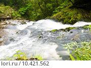 Купить «Lower part of Mac Lean Falls in the Catlins», фото № 10421562, снято 24 февраля 2019 г. (c) PantherMedia / Фотобанк Лори