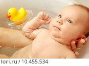 Купить «Bathing little baby», фото № 10455534, снято 24 марта 2019 г. (c) PantherMedia / Фотобанк Лори