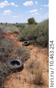 Купить «desert australia outback oceania wasteland», фото № 10463254, снято 19 октября 2019 г. (c) PantherMedia / Фотобанк Лори