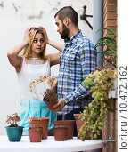 Купить «wife in shock of husband and shrunken plants», фото № 10472162, снято 16 июля 2019 г. (c) Яков Филимонов / Фотобанк Лори