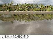 Купить «Empty Beach in Matapalo with palm trees and the ocean, Costa Rica», фото № 10490410, снято 17 февраля 2019 г. (c) PantherMedia / Фотобанк Лори