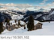 Купить «House in Passo Campolongo Valley near Skiing Resort of Arabba, D», фото № 10501102, снято 16 июля 2019 г. (c) PantherMedia / Фотобанк Лори