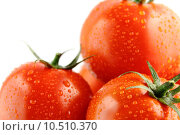 Купить «fresh tomatoes», фото № 10510370, снято 15 октября 2019 г. (c) PantherMedia / Фотобанк Лори
