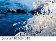 Изморозь. Стоковое фото, фотограф Виталий Пушкарев / Фотобанк Лори