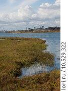 Купить «Bolsa Chica Wetlands», фото № 10529322, снято 18 июня 2019 г. (c) PantherMedia / Фотобанк Лори