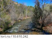 Купить «Treasures of New Mexico», фото № 10610242, снято 21 апреля 2019 г. (c) PantherMedia / Фотобанк Лори