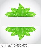 Купить «Bio concept design eco friendly banner», иллюстрация № 10630670 (c) PantherMedia / Фотобанк Лори