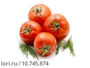 Купить «food vegetable tomato herbs dill», фото № 10745874, снято 27 июня 2019 г. (c) PantherMedia / Фотобанк Лори