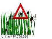 Купить «insect insects ticks tick im», фото № 10756526, снято 20 сентября 2019 г. (c) PantherMedia / Фотобанк Лори