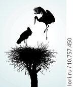 Купить «Betrothal storks», иллюстрация № 10757450 (c) PantherMedia / Фотобанк Лори