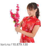 Купить «Chinese cheongsam girl decorate», фото № 10879130, снято 16 июня 2019 г. (c) PantherMedia / Фотобанк Лори