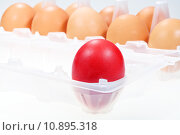 Купить «red chicken egg against several brown eggs», фото № 10895318, снято 26 марта 2019 г. (c) PantherMedia / Фотобанк Лори