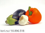 Купить «vegetable garlic paprika peppers eggplant», фото № 10896518, снято 24 июня 2019 г. (c) PantherMedia / Фотобанк Лори