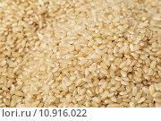Купить «Brown rice», фото № 10916022, снято 22 июля 2019 г. (c) PantherMedia / Фотобанк Лори