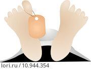 Купить «feet with tag», иллюстрация № 10944354 (c) PantherMedia / Фотобанк Лори