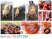 Купить «process whith passes meat from the slaughter to tasty fresh dish», фото № 10977054, снято 17 октября 2018 г. (c) PantherMedia / Фотобанк Лори