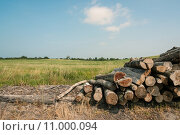 Купить «Pile of wood», фото № 11000094, снято 22 мая 2019 г. (c) PantherMedia / Фотобанк Лори