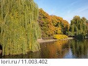 Saxon Garden in Warsaw. Стоковое фото, фотограф Artur Bogacki / PantherMedia / Фотобанк Лори