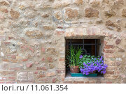 Old Tuscany building with flowers, Pienza, Italy. Стоковое фото, фотограф Frank Fischbach / PantherMedia / Фотобанк Лори