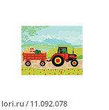 Купить «man driving a tractor with a trailer full of vegetables», иллюстрация № 11092078 (c) PantherMedia / Фотобанк Лори