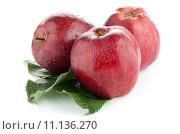 Купить «Ripe red apples», фото № 11136270, снято 15 октября 2019 г. (c) PantherMedia / Фотобанк Лори