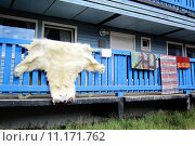 Купить «skin carpet arctic carpeting carpets», фото № 11171762, снято 23 февраля 2019 г. (c) PantherMedia / Фотобанк Лори