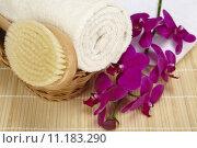 Купить «Bath brush and rolled towel in a basket», фото № 11183290, снято 20 января 2019 г. (c) PantherMedia / Фотобанк Лори
