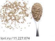 Купить «Dill seed», фото № 11227074, снято 27 июня 2019 г. (c) PantherMedia / Фотобанк Лори