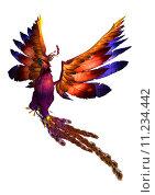 Купить «Flying Phoenix», фото № 11234442, снято 19 апреля 2019 г. (c) PantherMedia / Фотобанк Лори