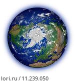 Купить «Northern hemisphere on white», фото № 11239050, снято 23 марта 2019 г. (c) PantherMedia / Фотобанк Лори