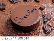 Купить «still life of Sacher cake», фото № 11300010, снято 26 марта 2019 г. (c) PantherMedia / Фотобанк Лори