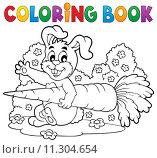 Купить «Coloring book rabbit theme 4», иллюстрация № 11304654 (c) PantherMedia / Фотобанк Лори