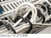 Купить «network cables and servers in a technology data center», фото № 11371894, снято 21 июня 2018 г. (c) PantherMedia / Фотобанк Лори