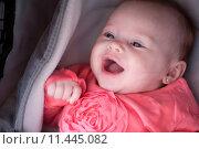 Купить «Smiling baby in the pram», фото № 11445082, снято 21 февраля 2018 г. (c) PantherMedia / Фотобанк Лори