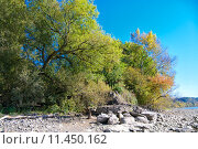 Купить «nature water natural landscape season», фото № 11450162, снято 22 июля 2019 г. (c) PantherMedia / Фотобанк Лори