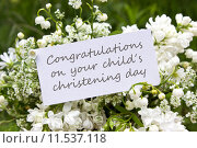 Купить «white green plant flower paper», фото № 11537118, снято 21 сентября 2019 г. (c) PantherMedia / Фотобанк Лори