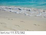 Берег Карибского моря. Стоковое фото, фотограф Скулков Павел Олегович / Фотобанк Лори