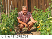 Купить «Мужчина на дачном участке», эксклюзивное фото № 11578734, снято 23 июля 2011 г. (c) Юрий Морозов / Фотобанк Лори