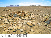 Купить «desert namibia expire wasteland expiry», фото № 11646478, снято 24 октября 2019 г. (c) PantherMedia / Фотобанк Лори