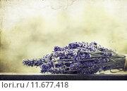 Купить «Lavender bouquet», фото № 11677418, снято 21 сентября 2019 г. (c) PantherMedia / Фотобанк Лори