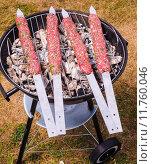Купить «Barbecuing shish kebab on charcoal grill», фото № 11760046, снято 15 ноября 2019 г. (c) PantherMedia / Фотобанк Лори