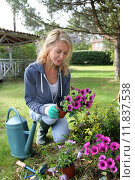 Купить «Cheerful blond woman planting flowers in garden», фото № 11837538, снято 19 декабря 2018 г. (c) PantherMedia / Фотобанк Лори