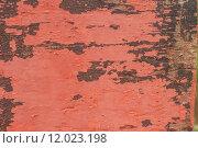 Купить «Color-Peel old wood texture», фото № 12023198, снято 18 июня 2018 г. (c) PantherMedia / Фотобанк Лори